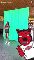 arkansasstate_mascot