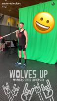 arkansasstate_wolvesup